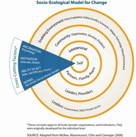 ecological systems theory essay